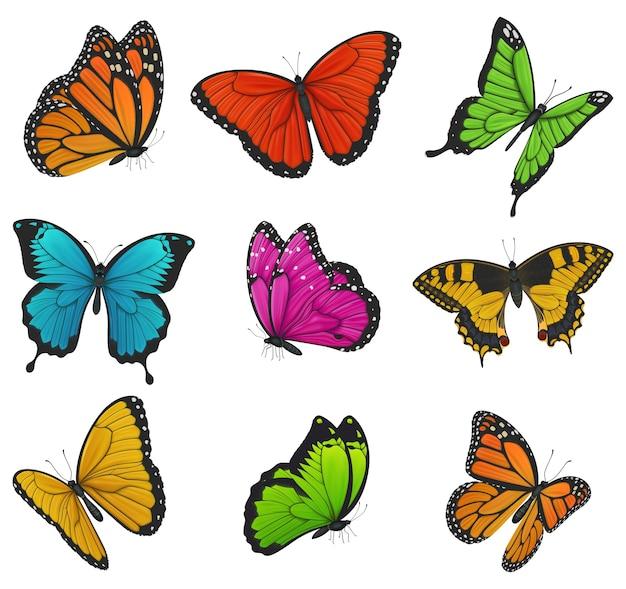 Grote verzameling kleurrijke vlinders. illustratie