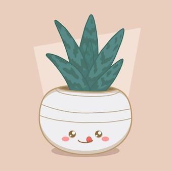 Grote vetplant in een schattige ronde pot