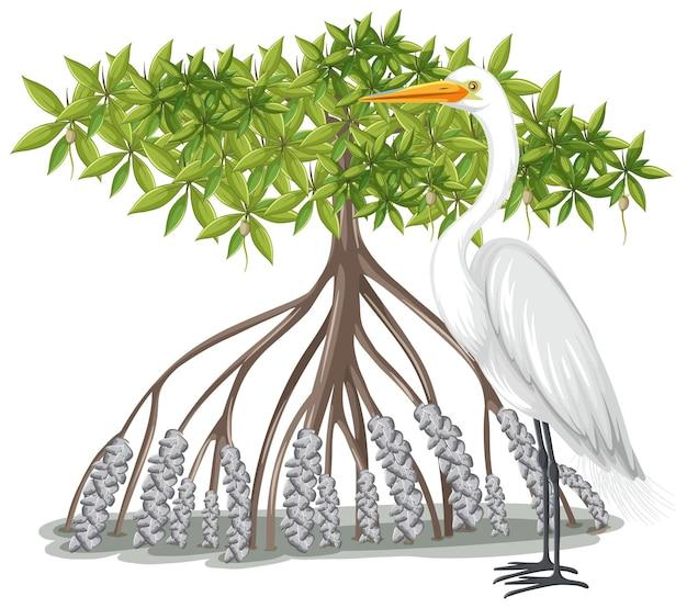 Grote zilverreiger met mangroveboom in cartoonstijl op wit