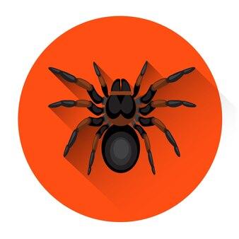 Grote zwarte spider scary insect halloween vakantie pictogram