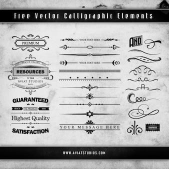 Grunge kalligrafische decoratieve elementen