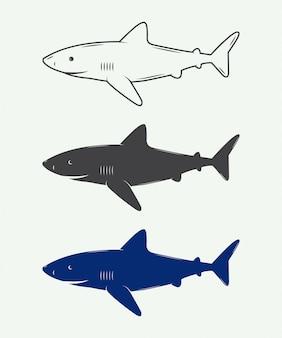 Haaien voor logo's