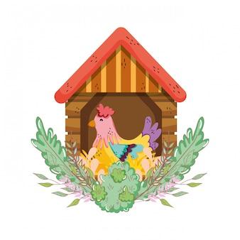 Haanvogellandbouwbedrijf in het blokhuis