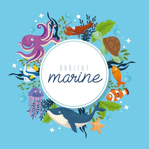 Habitat marine, dieren in de oceaan, bewoners van de zeewereld, schattige onderwaterwezens, onderzeese fauna