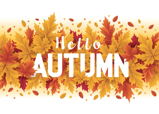 Hallo herfstseizoen ontwerp. herfst seizoensgebonden sjabloon met blad