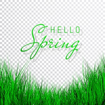 Hallo lente poster met groen gras