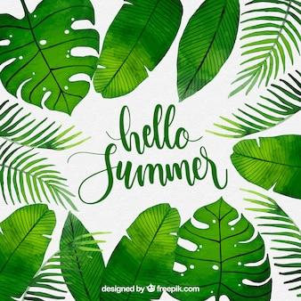 Hallo zomer achtergrond met planten in aquarel stijl