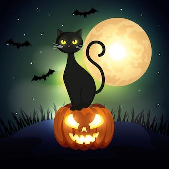 Halloween-kat over pompoen in donkere nacht