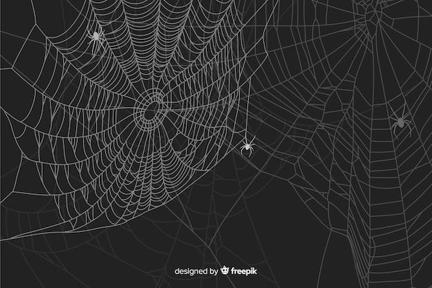 Halloween spinnenweb achtergrond