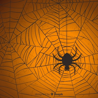 Halloween-spinnewebachtergrond