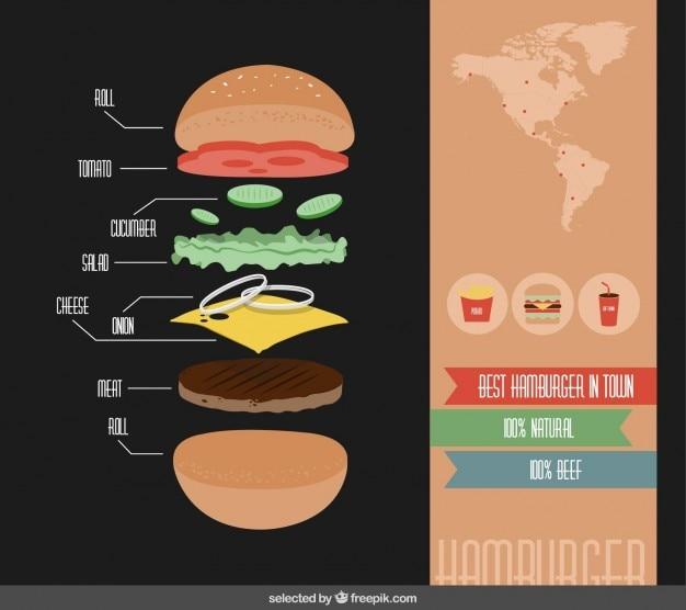 Hamburger ingrediënten infographics