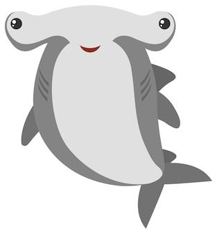 Hammerhead haai met blij gezicht