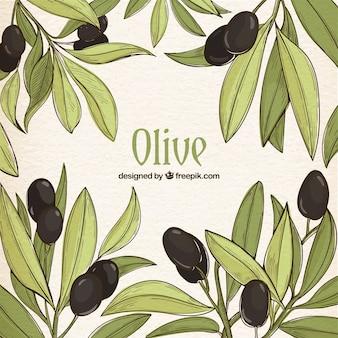 Hand-drawn achtergrond van groene bladeren en zwarte olijven
