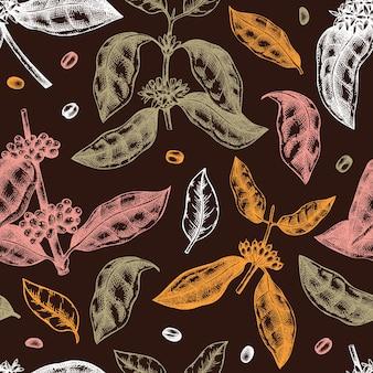 Hand geschetst koffie plant naadloze patroon