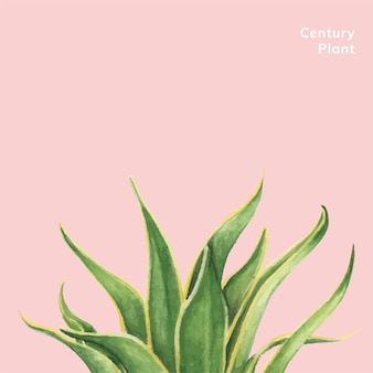 Hand getekend amerikaanse aloë eeuw plant