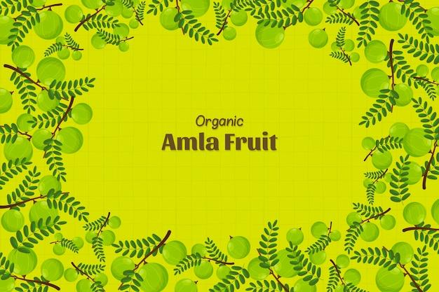 Hand getekend amla fruit achtergrond geïllustreerd