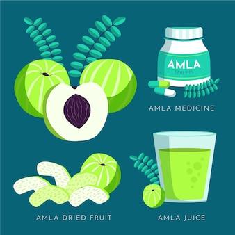 Hand getekend amla fruit elementen pack