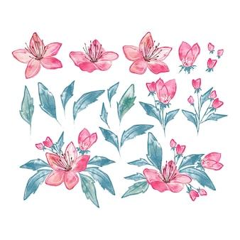 Hand getekend aquarel bloemen set