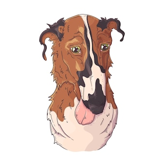 Hand getekend borzoi hondenportret