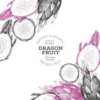 Hand getekend dragon fruit sjabloon. biologische vers voedsel illustratie. retro pitaya fruit banner.