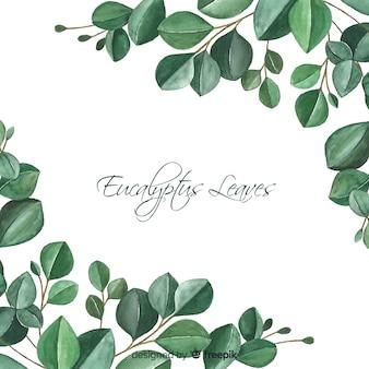 Hand getekend eucalyptus laat achtergrond