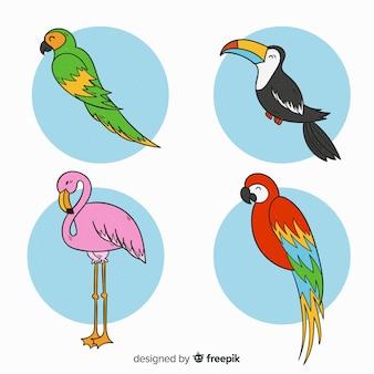 Hand getekend exotische vogel collectie