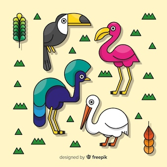 Hand getekend exotische vogels collectie