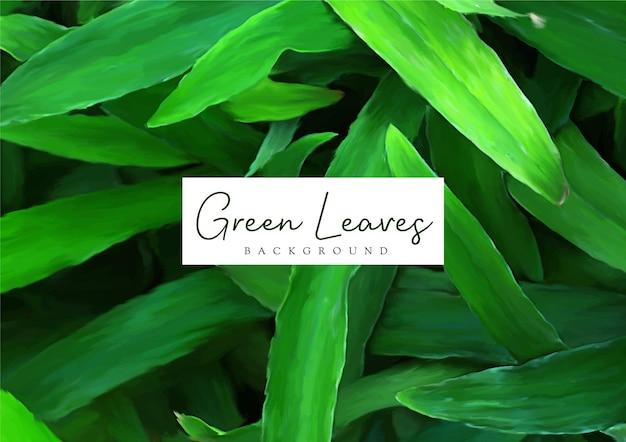 Hand getekend groene bladeren natuur achtergrondontwerp