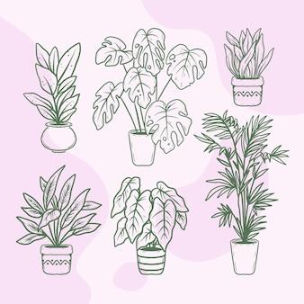 Hand getekend kamerplant collectie