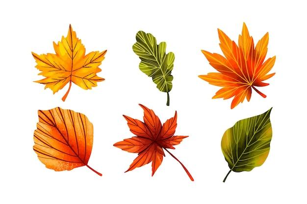 Hand getekend kleurrijke bladeren collectie
