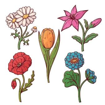 Hand getekend mooie bloemen pack