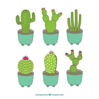 Hand getekend pak klassieke cactus