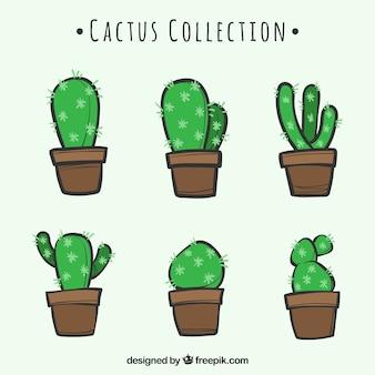 Hand getekend pak van mooie cactus