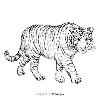 Hand getekend realistische tijger