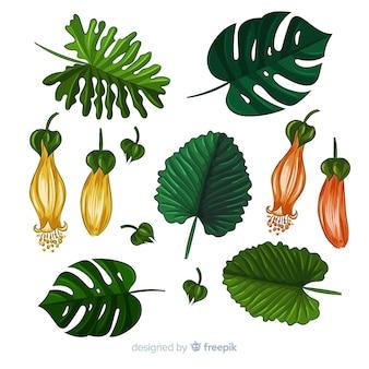 Hand getekend realistische tropische planten pack