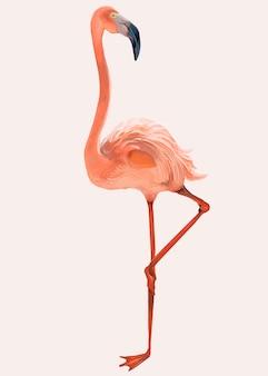 Hand getekend roze flamingo