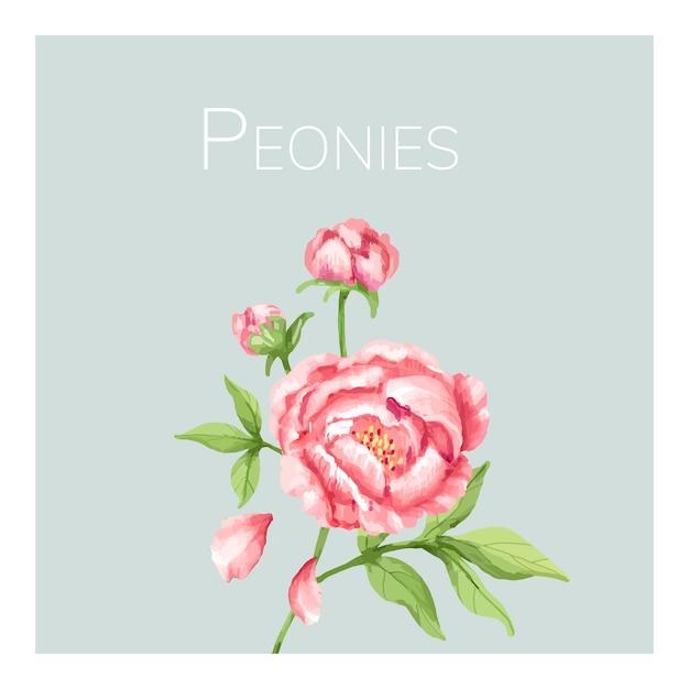 Hand getekend roze pioenroos bloem illustratie
