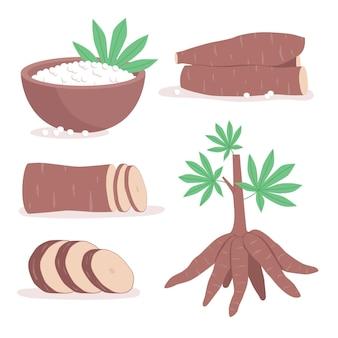 Hand getekend tapioca illustratie