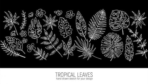 Hand getekend tropische bladeren