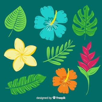 Hand getekend tropische bloemen en bladeren
