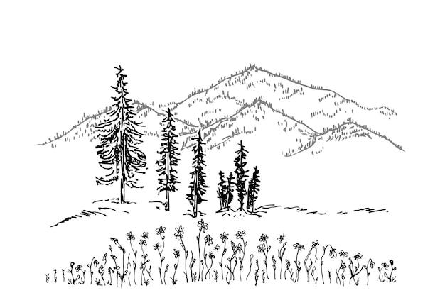 Hand getekend vectorlandschap met bergen, bomen en bloemen in de bergvallei bergtop