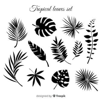 Hand getekend verzameling van tropische bladeren