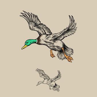 Hand getekend vliegende eend illustratie