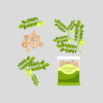 Hand getekend voedzame kikkererwten bonen en plant illustratie