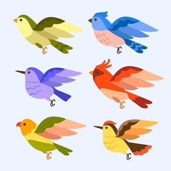 Hand getekend vogel collectie