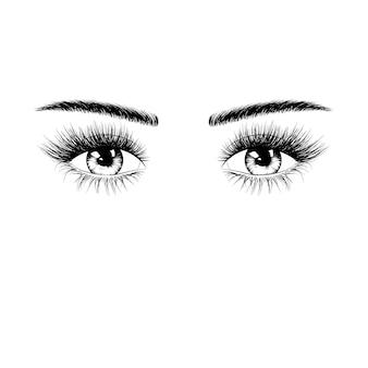 Hand getekend vrouwelijke ogen silhouet met wimpers en wenkbrauwen