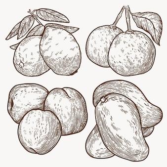 Hand getekend zwart-wit fruit collectie