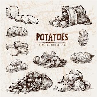Hand getekende aardappelen