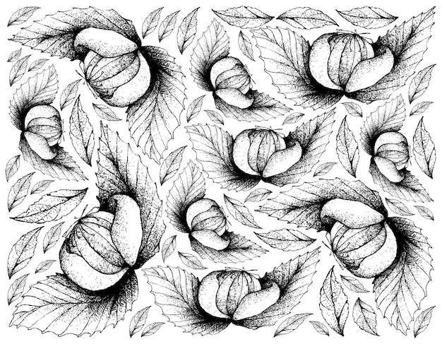 Hand getekende achtergrond van verse dengen fruit
