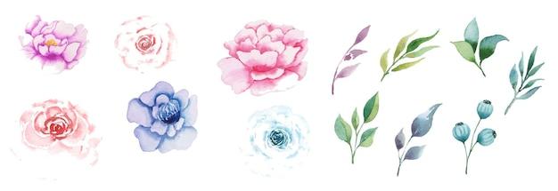 Hand getekende aquarel floral art set